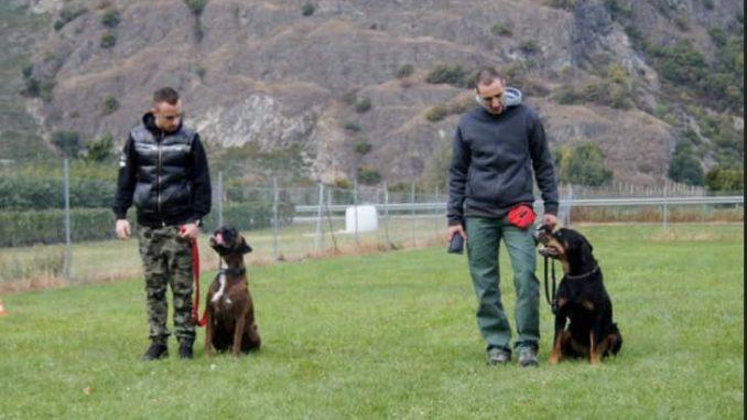 éducateur canin Fribourg